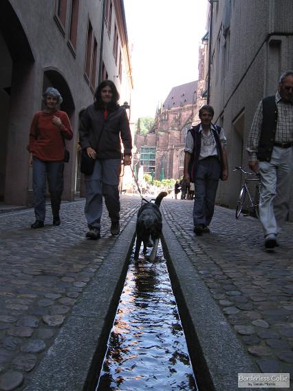 Hitting the streets in Hinterzarten